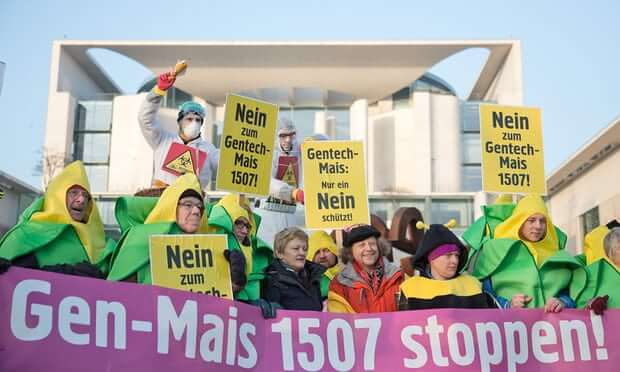 german gmo protest 22275756473