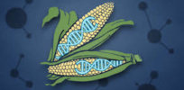 Viewpoint: By 'shutting the door' on crop gene editing, Europe shows its biotech regulations deeply flawed