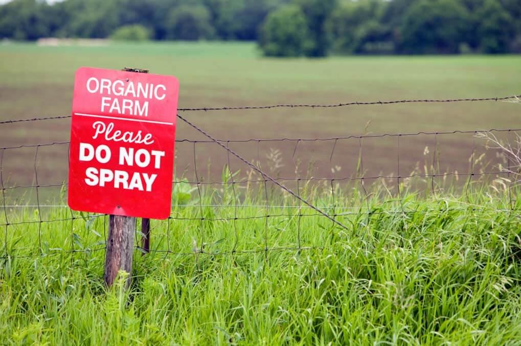 organic-farm6666