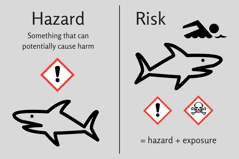 risk hazard sharks minimized