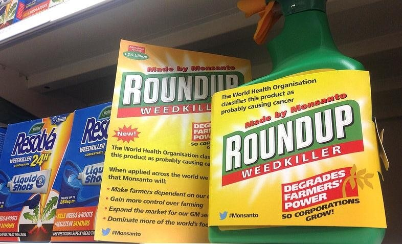 Roundup Trial Plaintiff In Glyphosate Cancer Lawsuit Asks For 18 Million In Damages As Jury Deliberations Continue Genetic Literacy Project