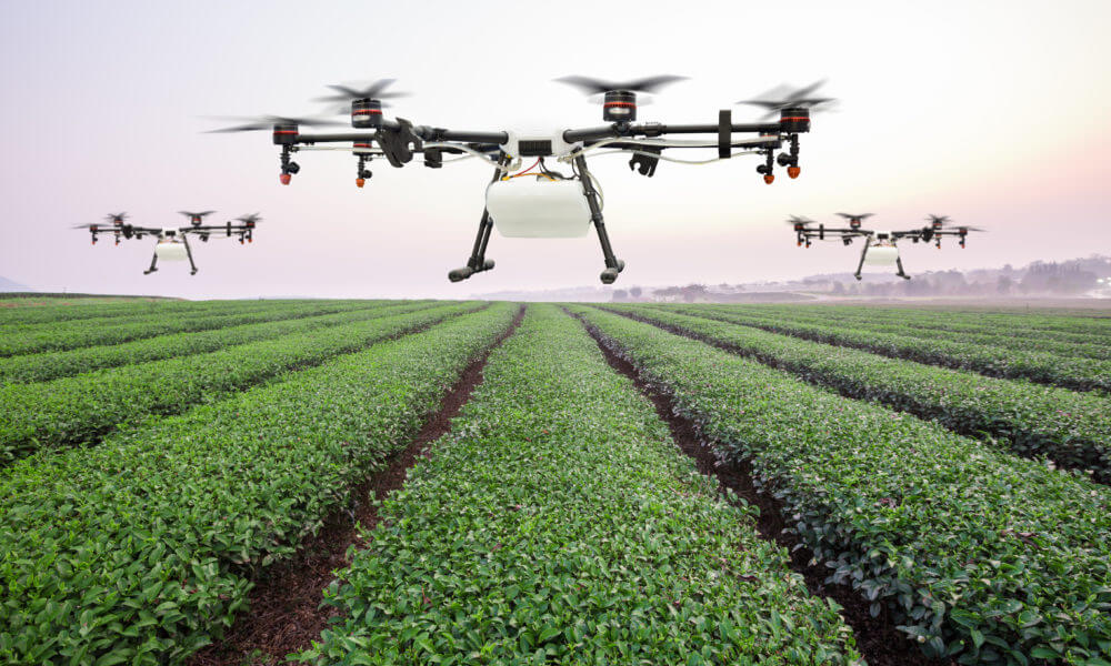 Image result for automation in china agriculture