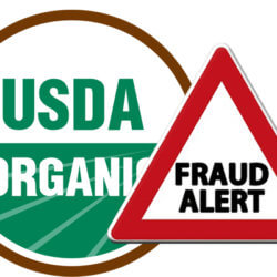usda fraud