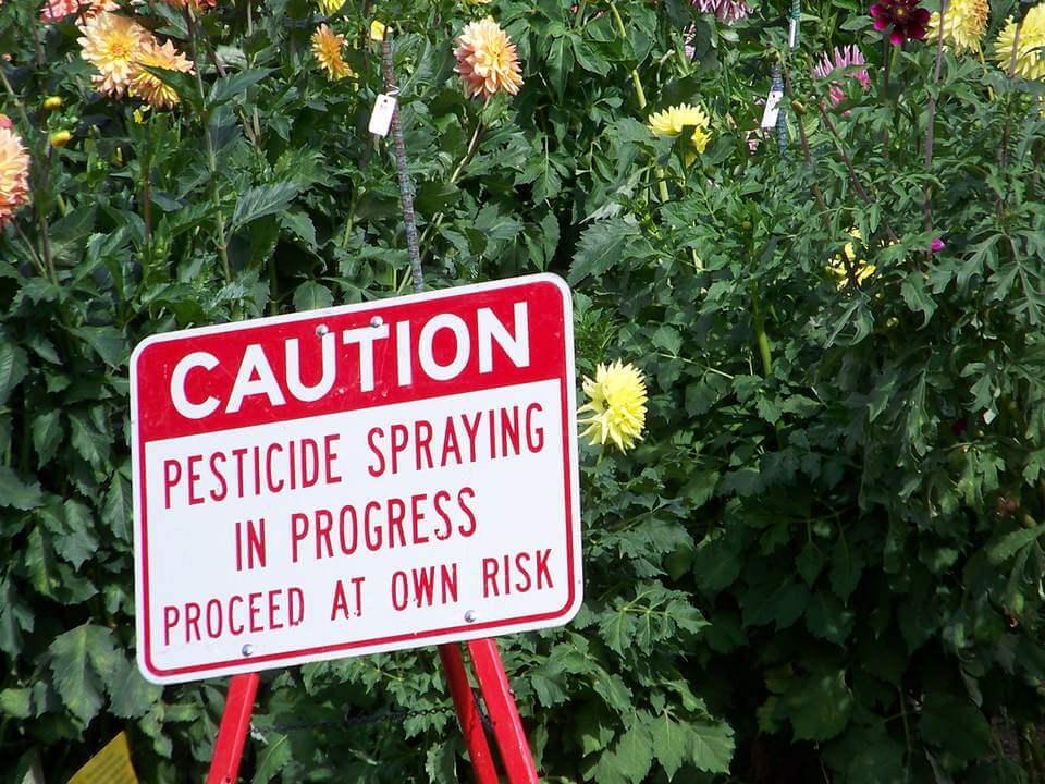 pesticde