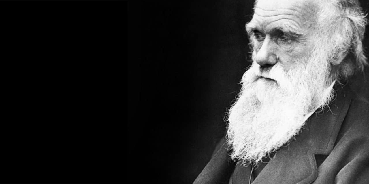 why evolution is more complicated than darwin imagined genetic