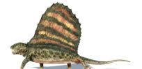 dimetrodon diet header iStock XXXLarge