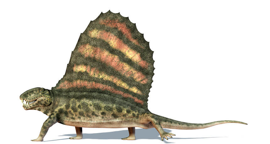 Paleocolor: What did dinosaurs look like? Shining a light on their true colors could illuminate behavior
