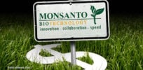 Monsanto Money Crops
