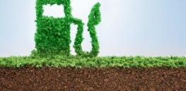 biofuels222278