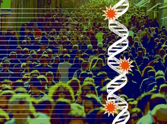 genome 8 2 18