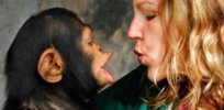 Why are humans so much smarter than other primates?
