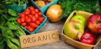 organic3456667