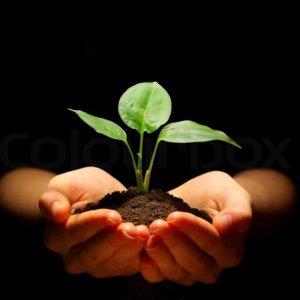 planthand