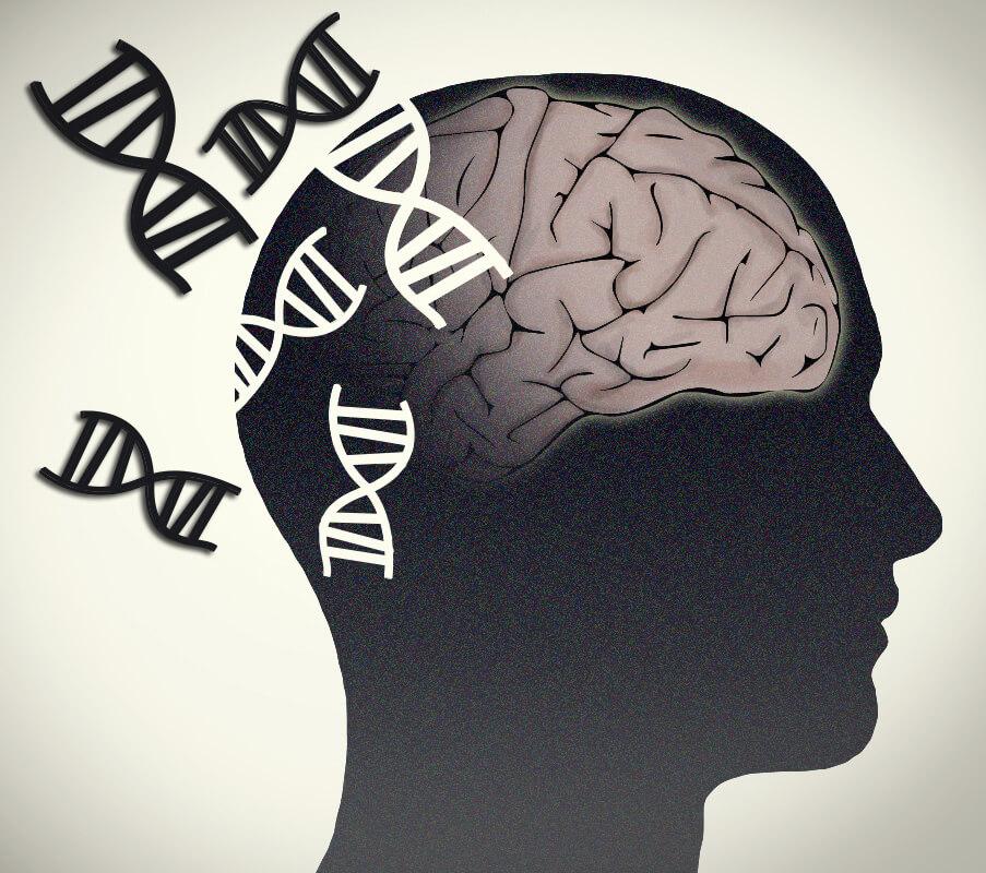 Alzheimer Disease 8 13 18 1