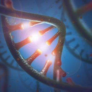 RNA 9 29 18