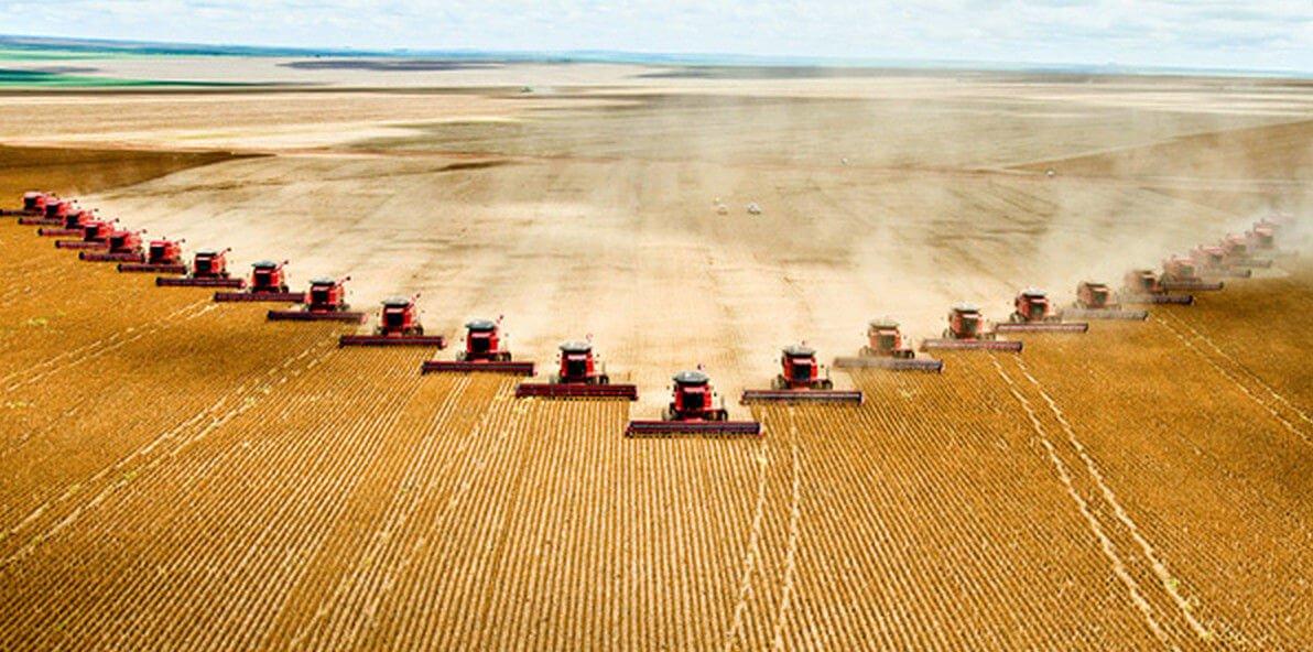 Sustainability advantage: 'High-yield' intensive agriculture