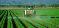Roundup on trial: Everything you need to know about the glyphosate herbicide controversy