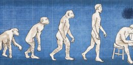 Tragic tradeoff: How depression evaded evolution