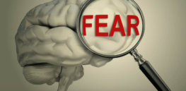 fear 10 14 18