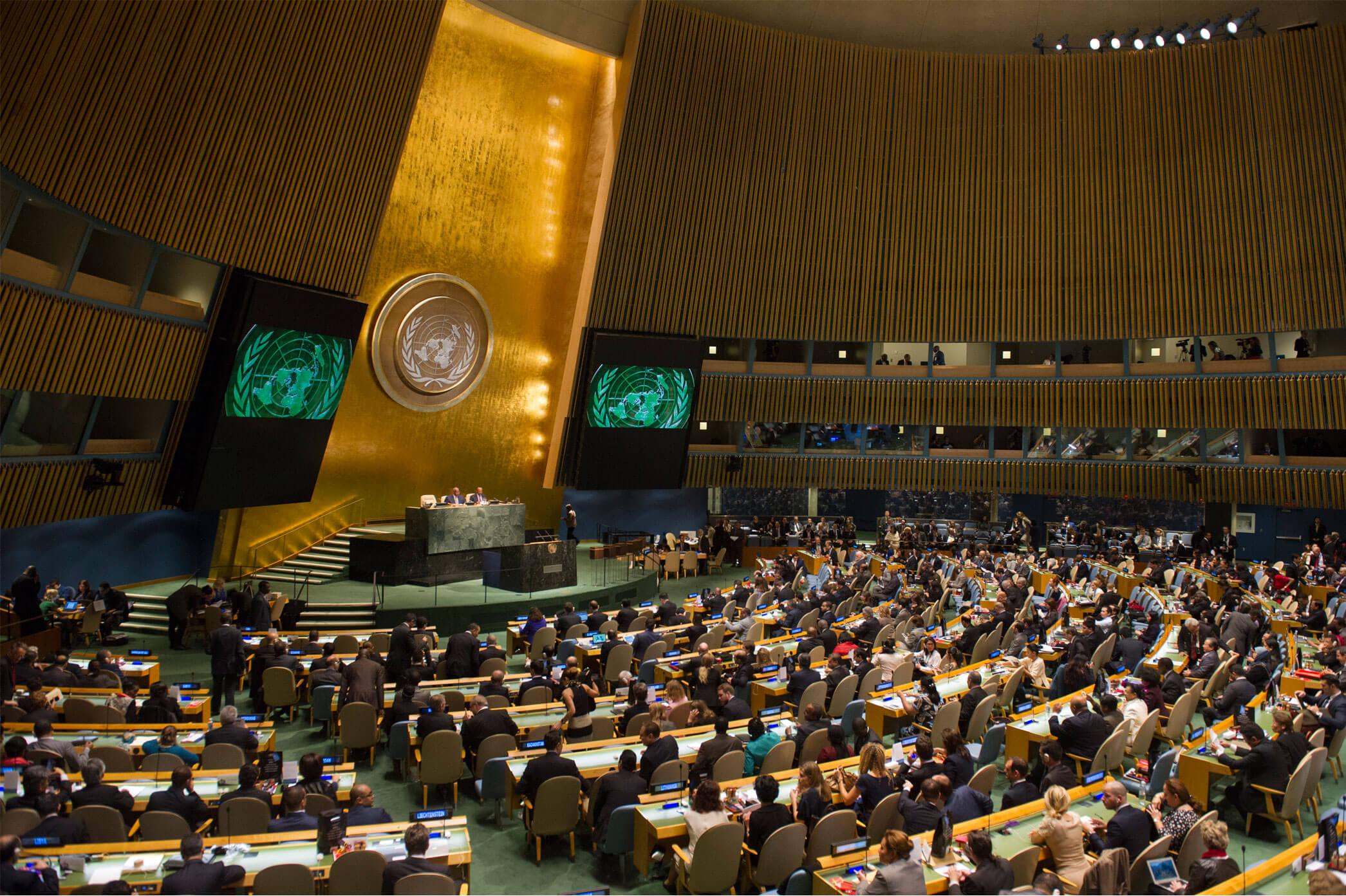 Viewpoint: Political 'horse-trading' at U.N. threatens sensible GMO, gene editing crop regulation