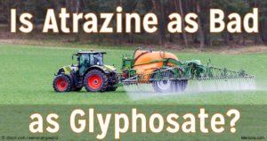 is atrazine as bad glyphosate fb
