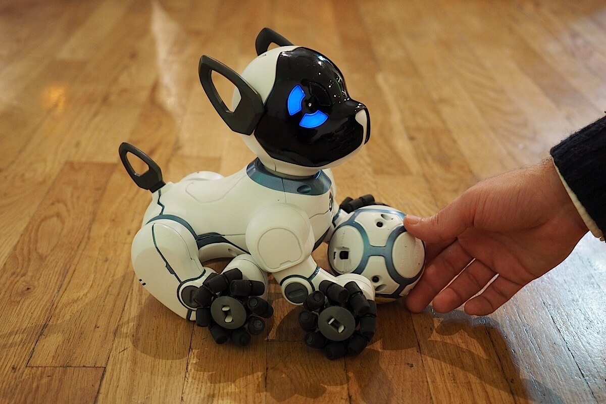 Is a robotic dog as good as the real thing? | Genetic