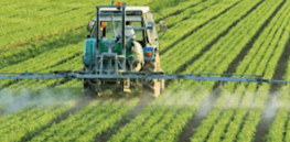 Sustainability failure: Anti-GMO France's 10-year effort to slash pesticide use boosted spraying by 12%