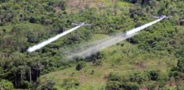 273 Colombian farmers sue government spraying glyphosate to destroy coca plants used to make cocaine