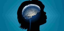 brain 11 26 18