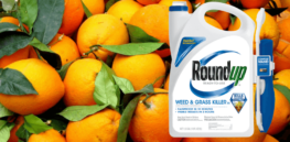 Plant scientist Kevin Folta: Claims about glyphosate in orange juice are 'brilliantly devious'