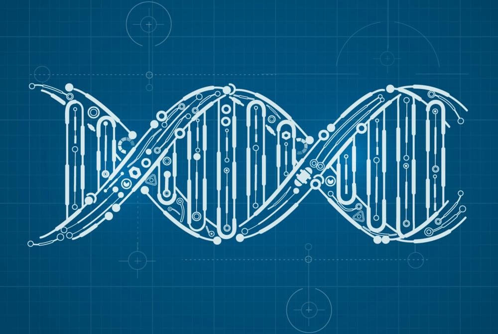genes 12 6 18 2.jpg