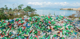 GMO bacteria could help resolve Africa's plastic pollution 'menace'