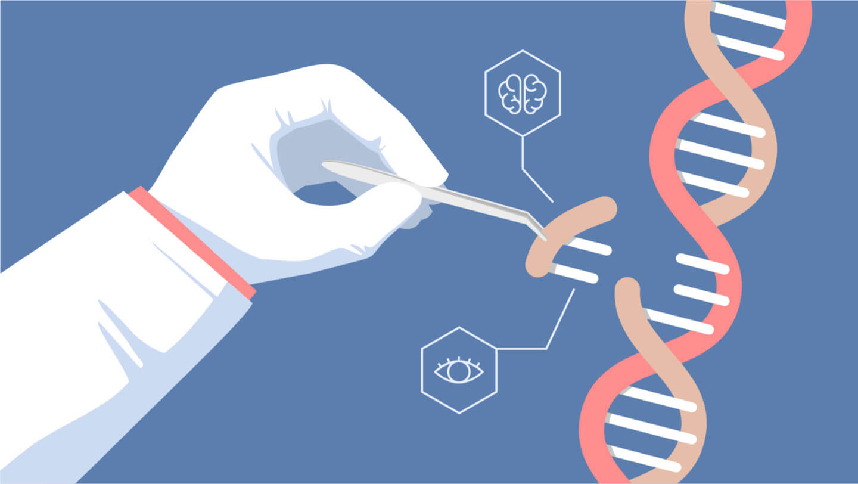 Perspectivas de la edición genética (CRISPR/Cas9) | Dto de ...