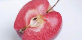 red flesh apple hi res