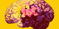 2-26-2019 alzheimers trial bathe brains genes