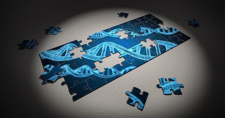 2-28-2019 asd genetic risk factors neurosciencenews public