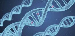 3-26-2019 image e depression genes