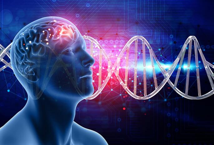 shared brain genetics istock