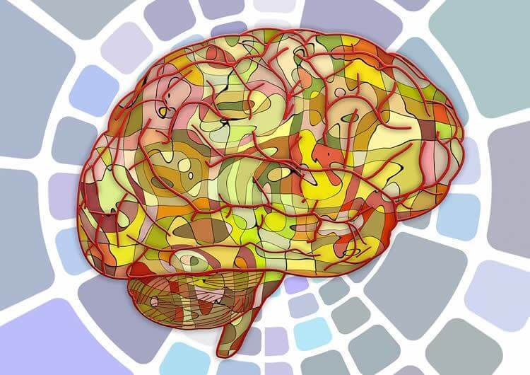 brain signals speech neurosciencenews public
