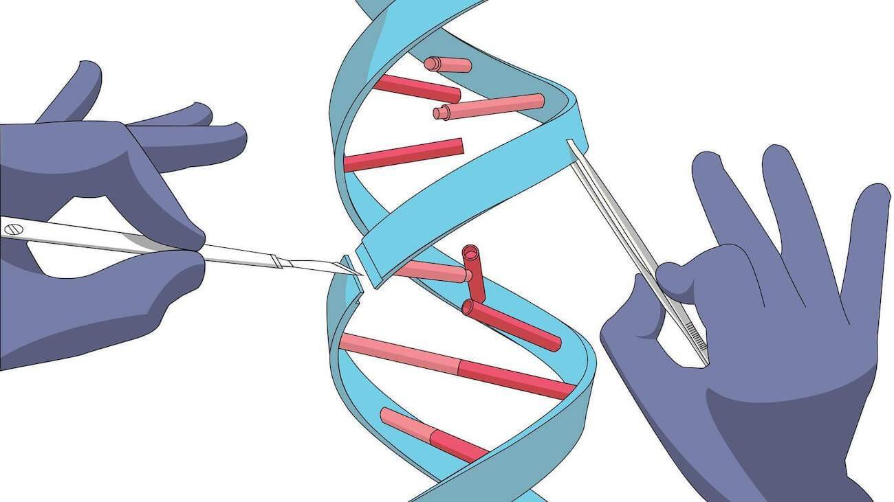 crispr opens the way for a new method of treatment genomic surgery