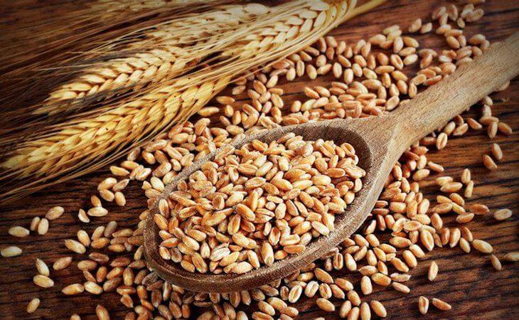 gluten sensibility b