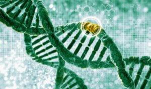dna gene editing shutterstock oycp t wqii fhk r z