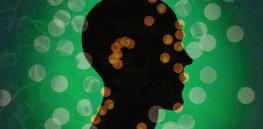 ih gut microbiome brain x