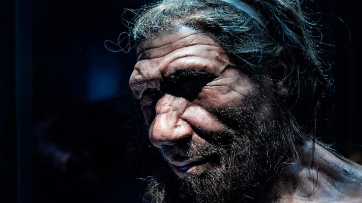 an unknown human ancestor may have mated with neanderthals and denisovans x