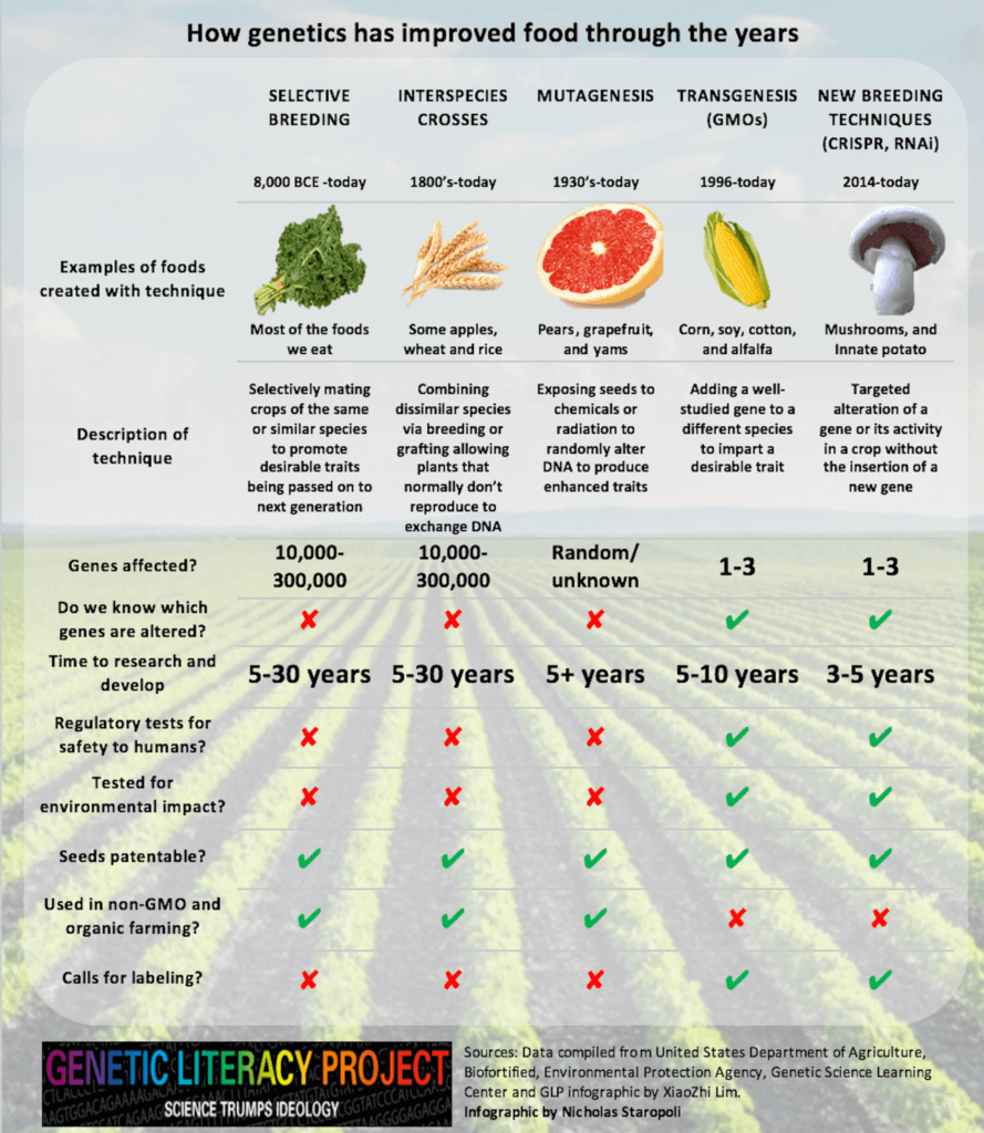 food and genes-large
