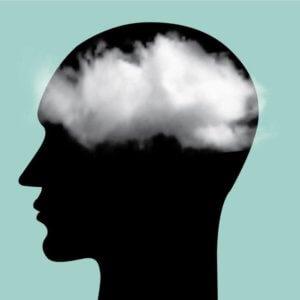 brain fog x