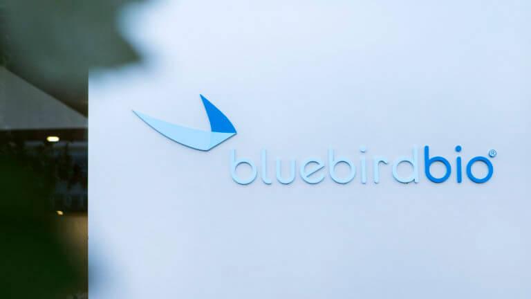 stat bluebird x