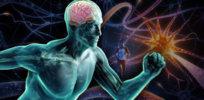 exercise brain featurec