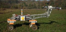 weed robot