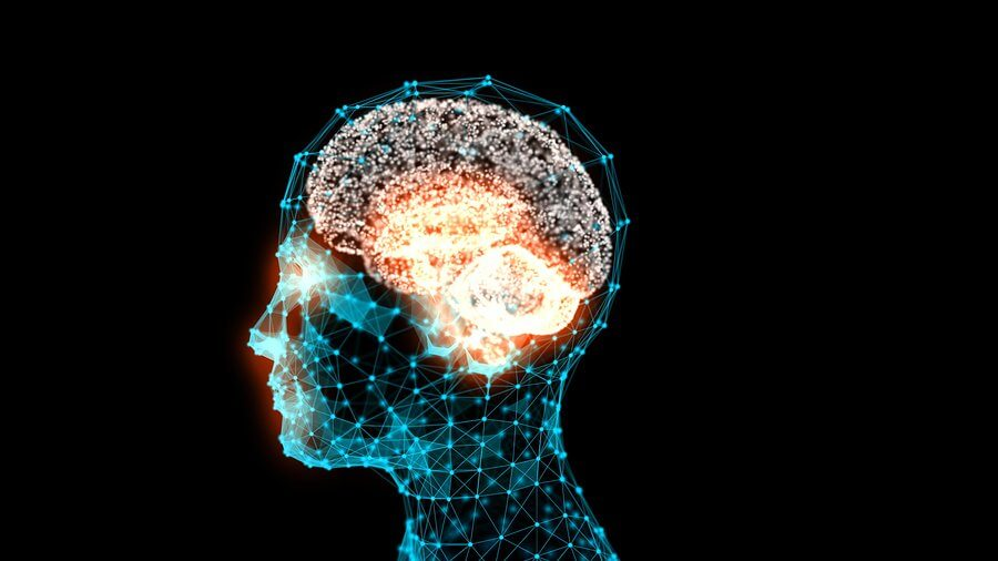 bigstock transparent human head with a
